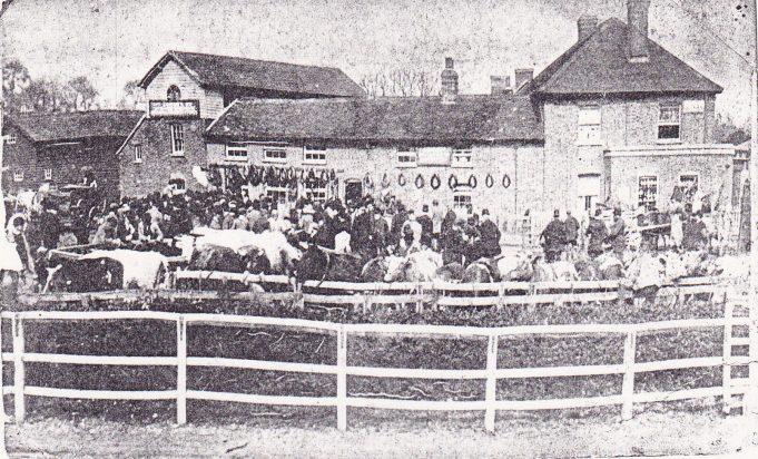 Wickford-market