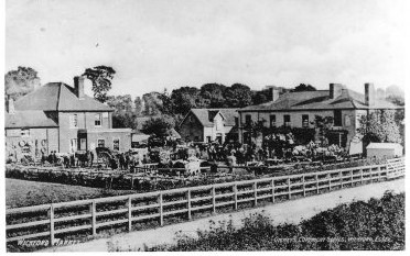 Views from Station approach c 1900