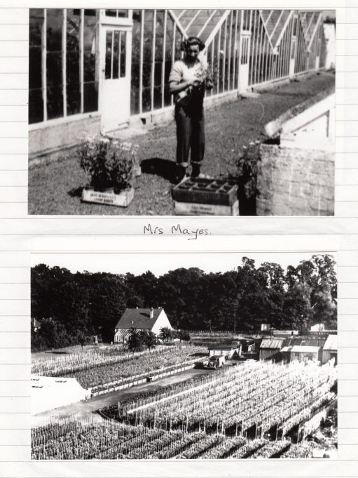 Mrs Mayes outside the greenhouses | Isobel Johnson Collection