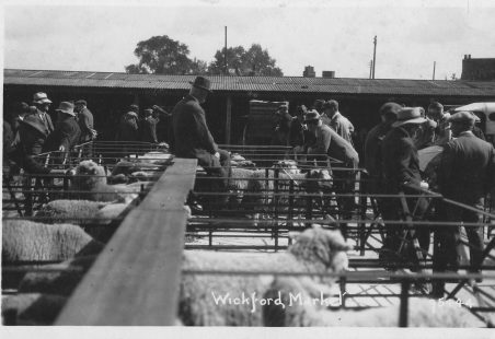 Wickford Animal Market