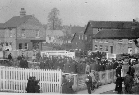 An unusual view of Wickford Market, early 1900s