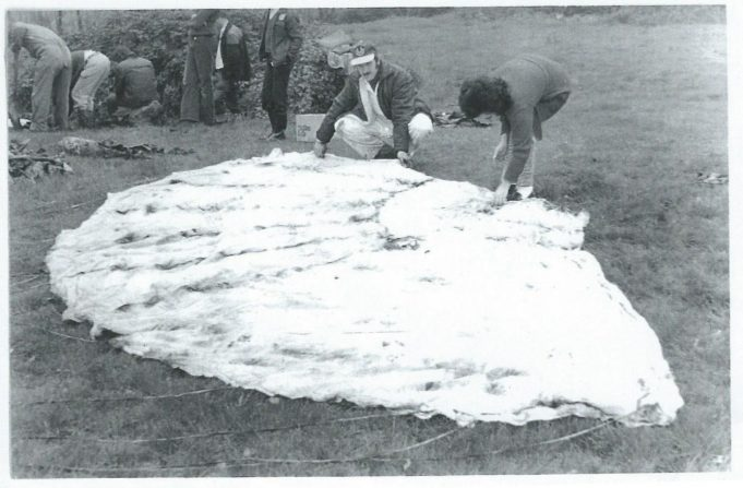 The parachute opened out at the site   Essex Aviation Group