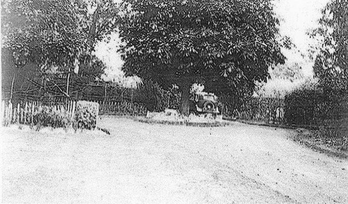 The garden 1934