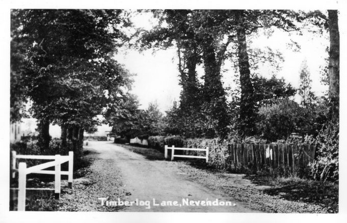 Timberlog Lane,Nevendon