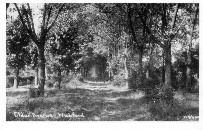Elder Avenue