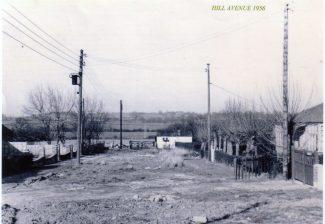 Hill Avenue