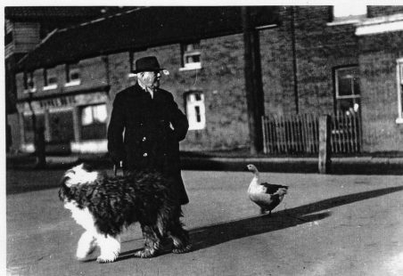 Richard Bartlett, Mr. Bartlett with his dog and goose go collecting for charity